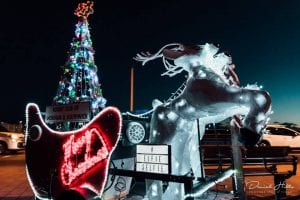 Shoreham Light up Christmas lights