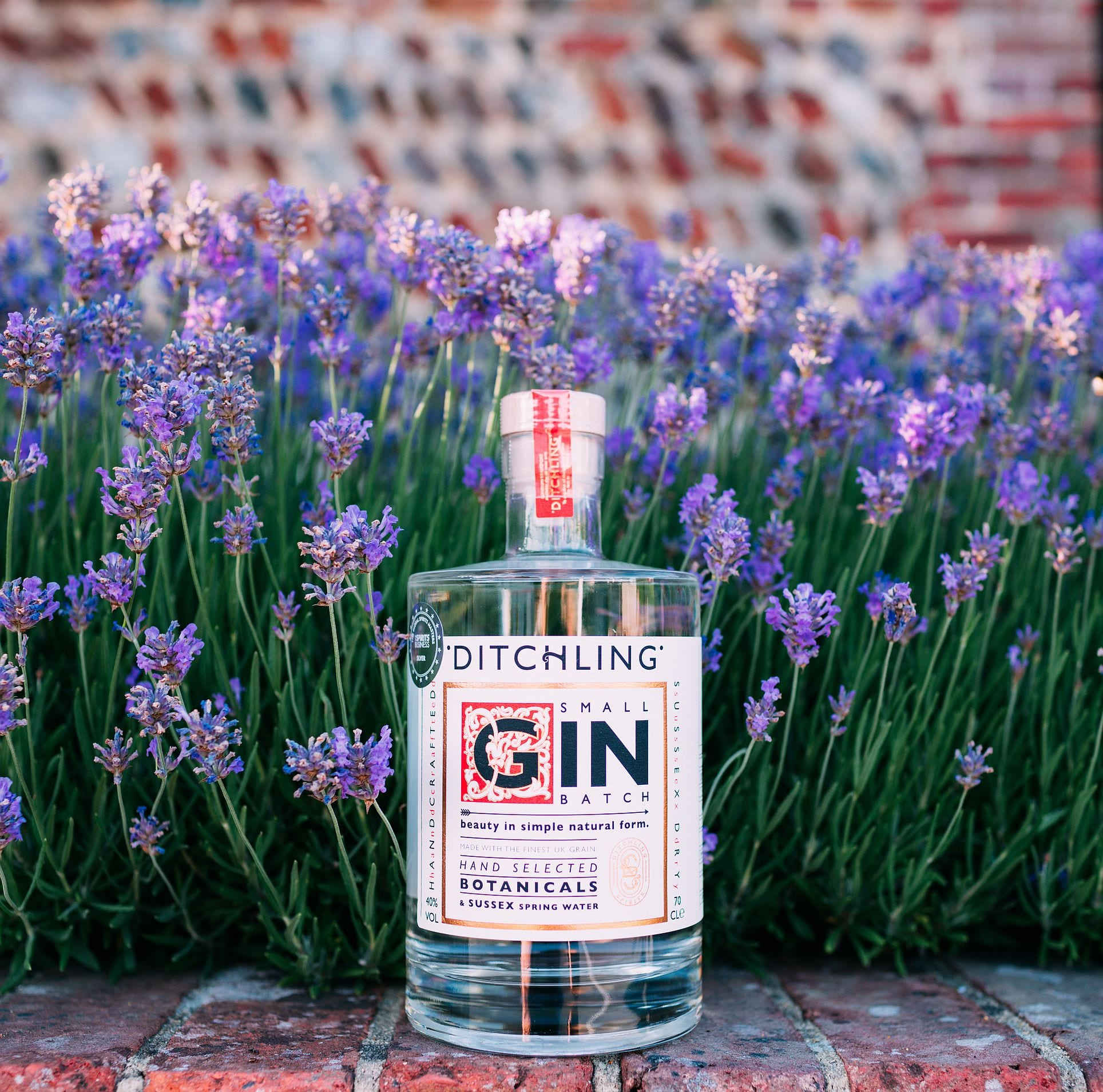 Win VIP tickets to made in Sussex at Glyndebourneplus a bottle of Ditchling Gin
