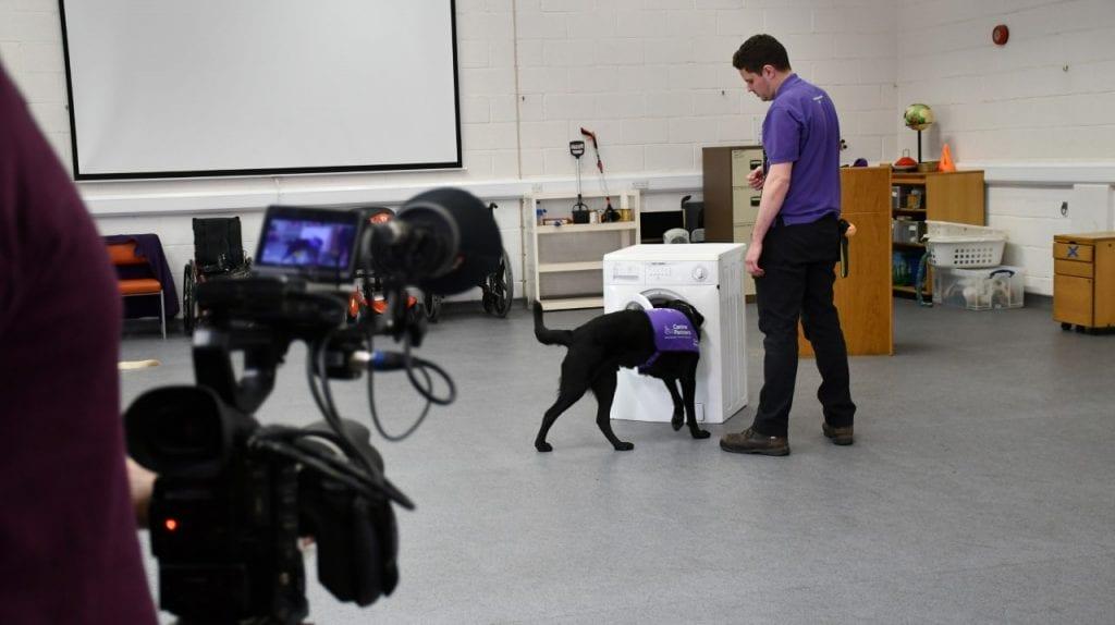 Local dog charity