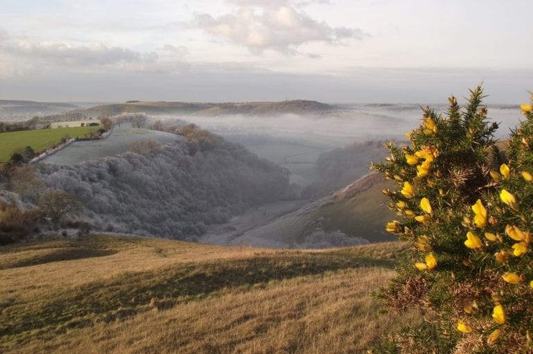 Rake Bottom, South Downs National Park in the winter