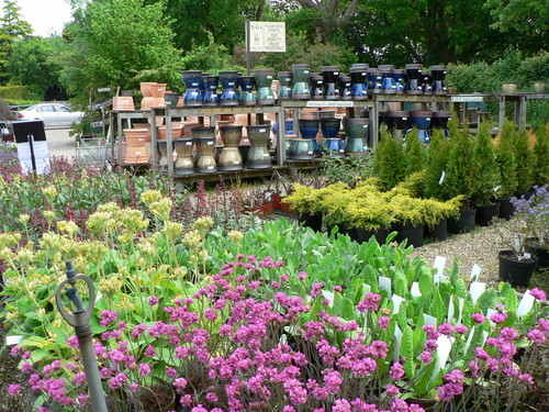 Village Nurseries West Chiltington