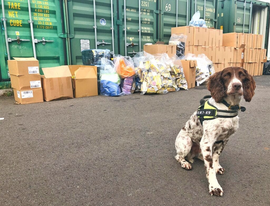 seizure of illegal tobacco in east Sussex by specially trained dog