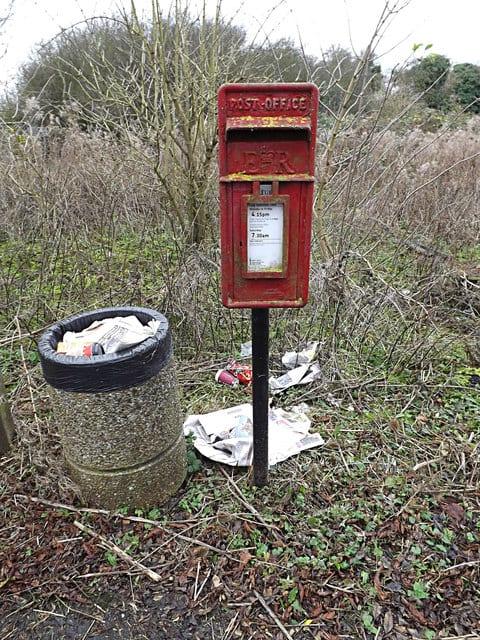 Rubbish bin and litter